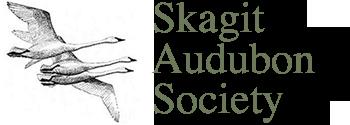 Skagit Banner
